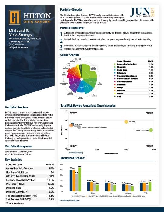 DIVYS Factsheet
