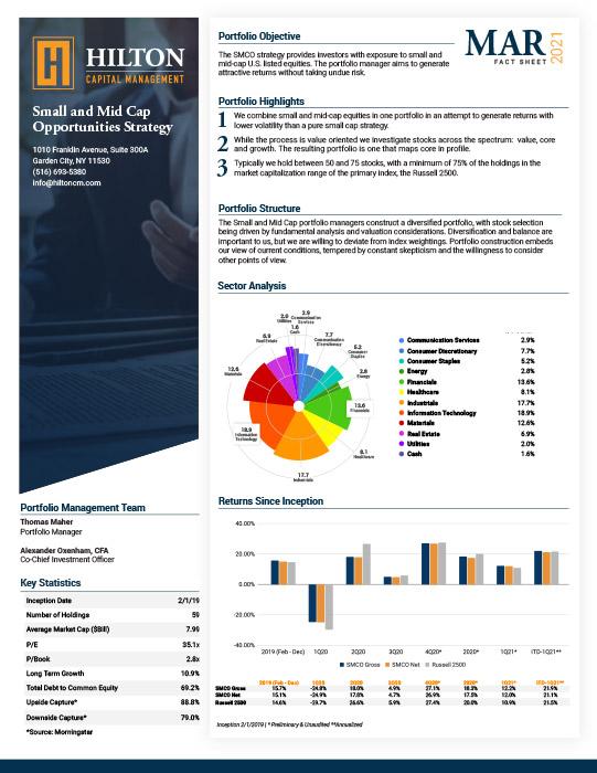 Small and Mid Cap Factsheet